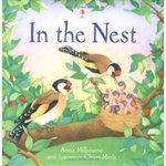 Nest_1