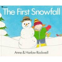 Snowfall2_3